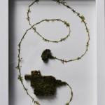 Sphagnum moss, rag paper, box frame